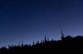 4K Cacti Slope Night Wallpaper 3840x2160 340x220