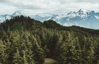 4K Mountains Trees Road Wallpaper 3840x2160 340x220