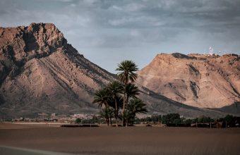 4K Palm Trees Mountains Desert Wallpaper 3840x2160 340x220
