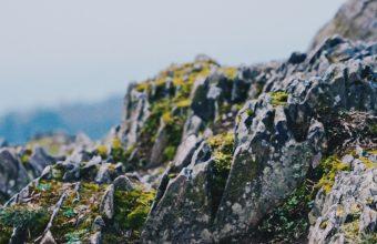 4K Rocks Stones Moss Wallpaper 3840x2160 340x220