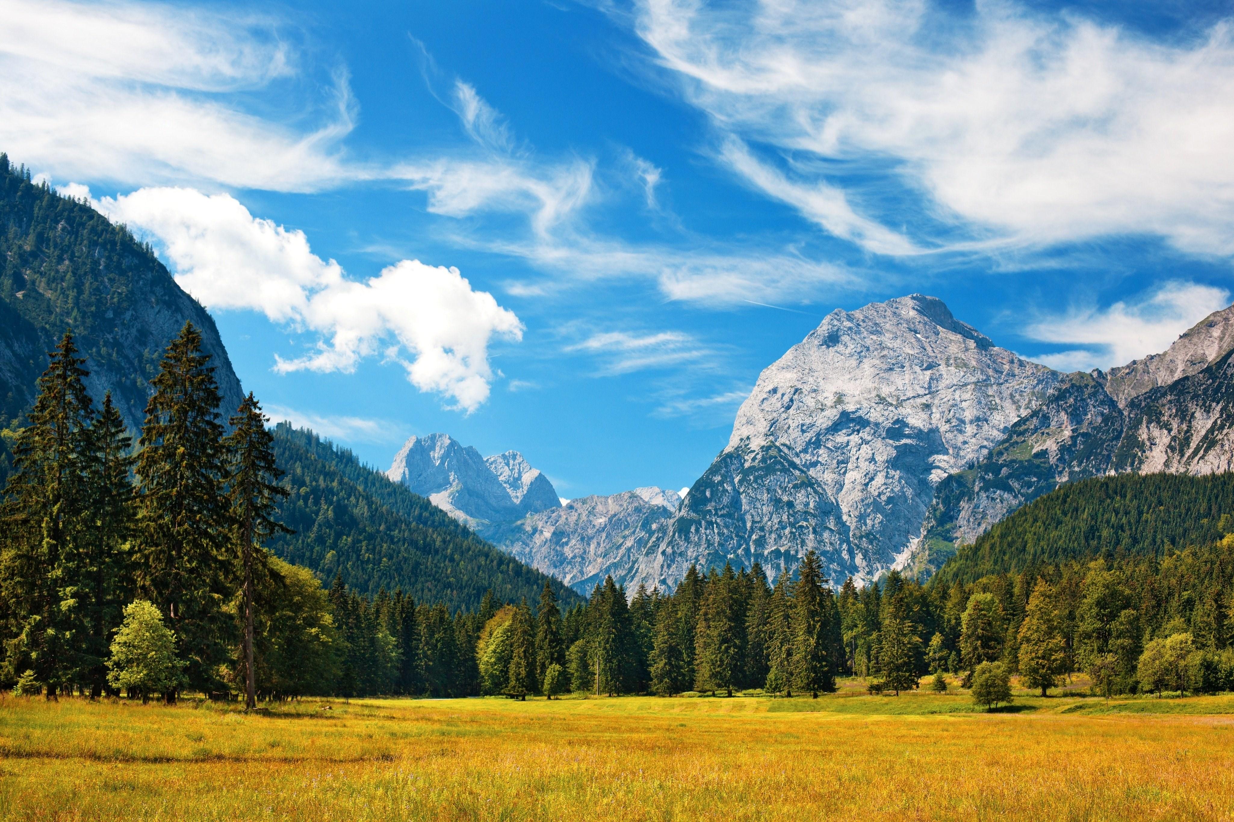 Швейцария Горы река деревья трава  № 184044 без смс