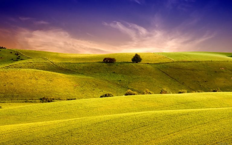 Amazing Landscape Wallpaper 1920x1200 768x480