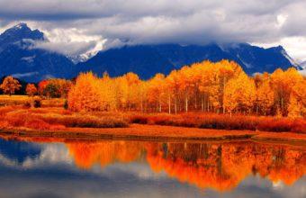 Autumn Forest River Wallpaper 1920x1200 340x220