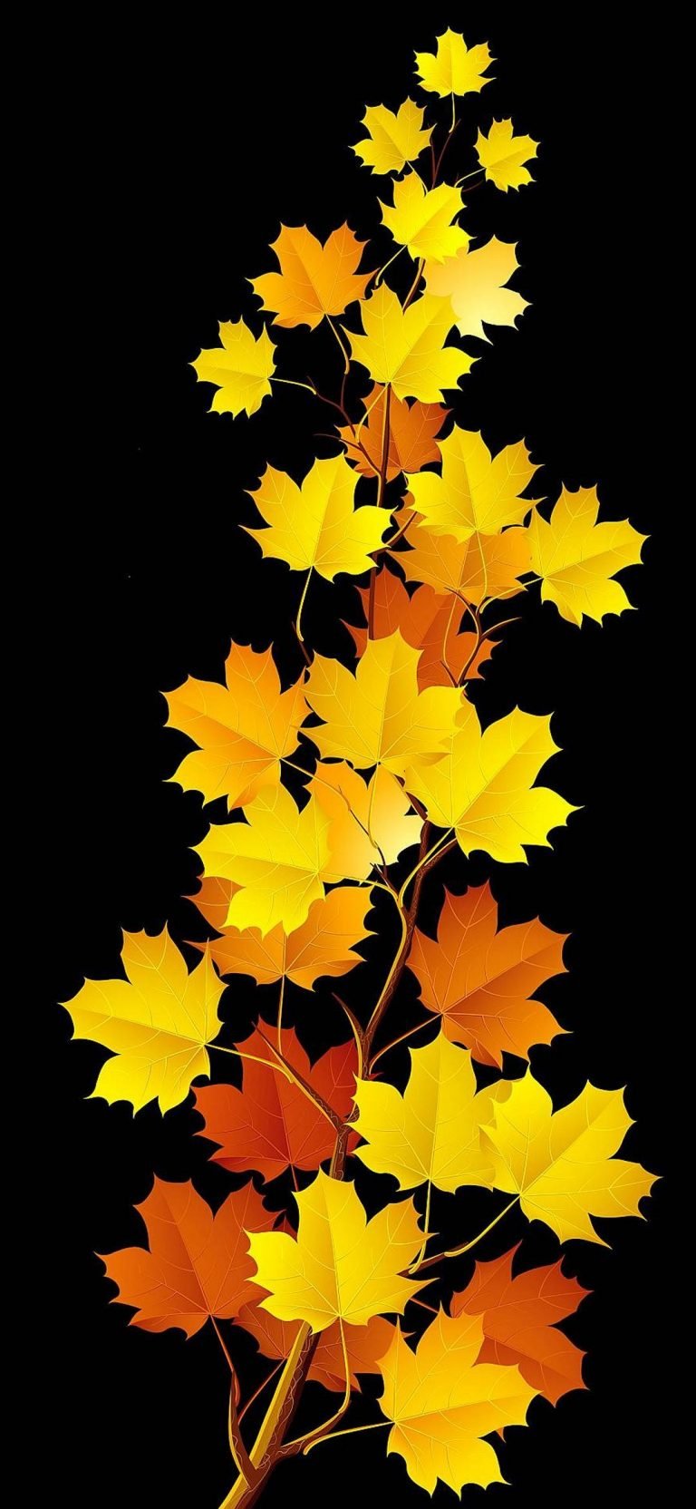Autumn Phone Wallpaper 058 768x1664