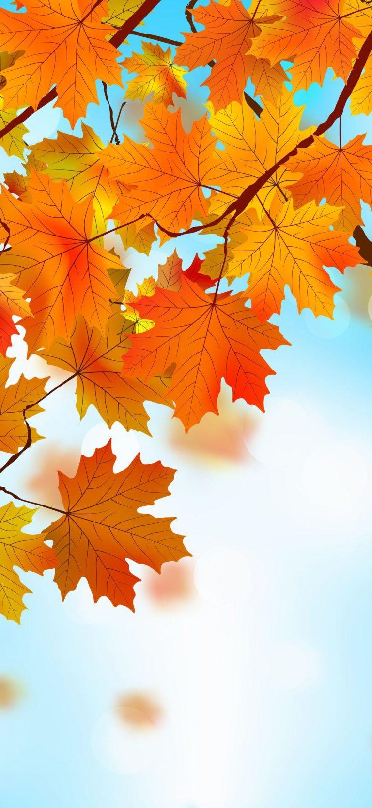Autumn Phone Wallpaper 060 768x1664