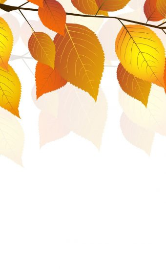 Autumn Phone Wallpaper 061 340x550