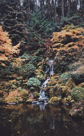 Autumn Phone Wallpaper 067 340x550