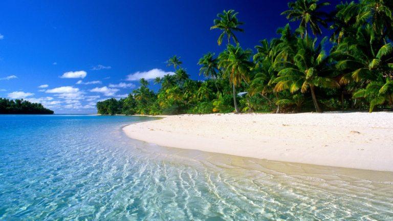 Beach Tropical Wallpaper 1365x768 768x432
