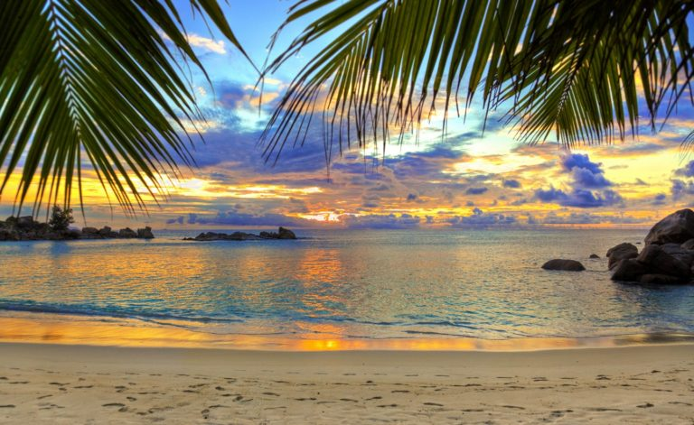 Beach Tropics Sea Wallpaper 1440x884 768x471
