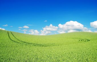 Beautiful Green Landscape Wallpaper 2560x1600 340x220