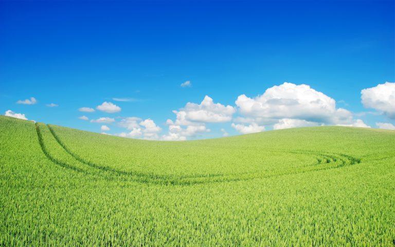 Beautiful Green Landscape Wallpaper 2560x1600 768x480