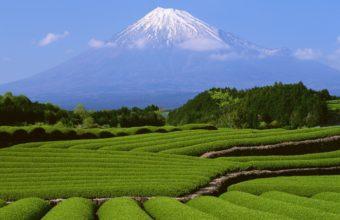 Beautiful Landscape View Wallpaper 2560x1560 340x220
