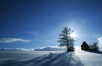 Beautiful View Of Winter Snow Wallpaper 2560x1600 340x220