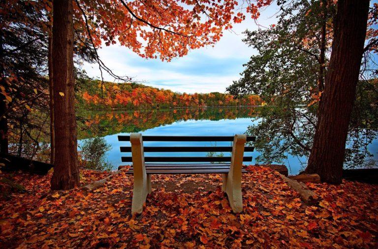 Bench Autumn River Wallpaper 2048x1351 768x507