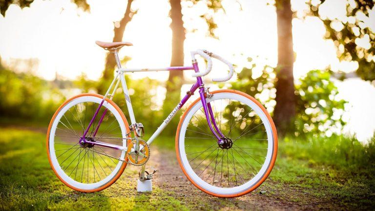 Bike Summer Spring Wallpaper 1920x1080 768x432