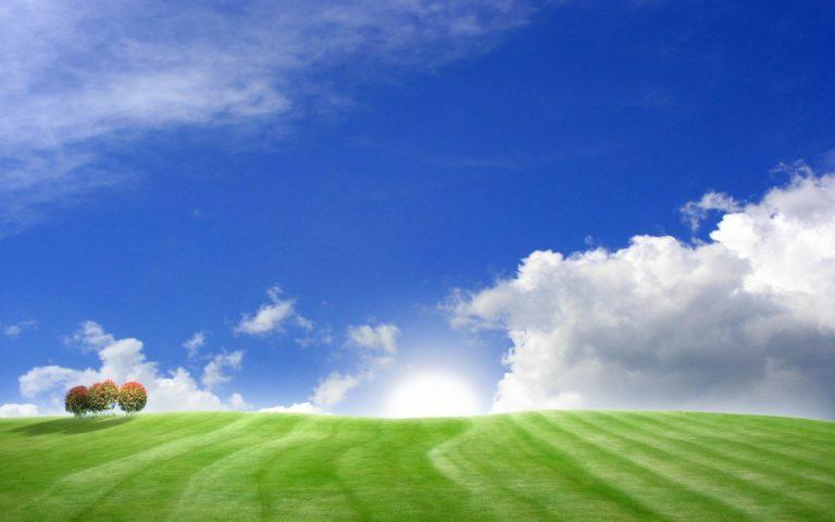 Blue Green Bliss Wallpaper 1680x1050 768x480