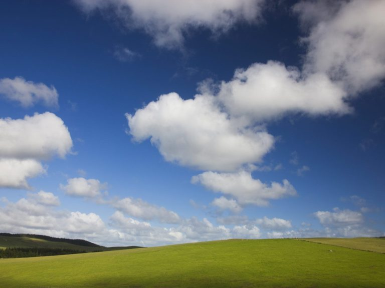 Blue Skies And Green Pastures Wallpaper 1600x1200 768x576