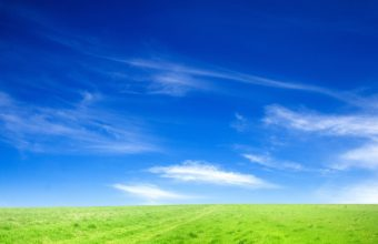 Blue Sky And Green Grass Wallpaper 1920x1200 340x220