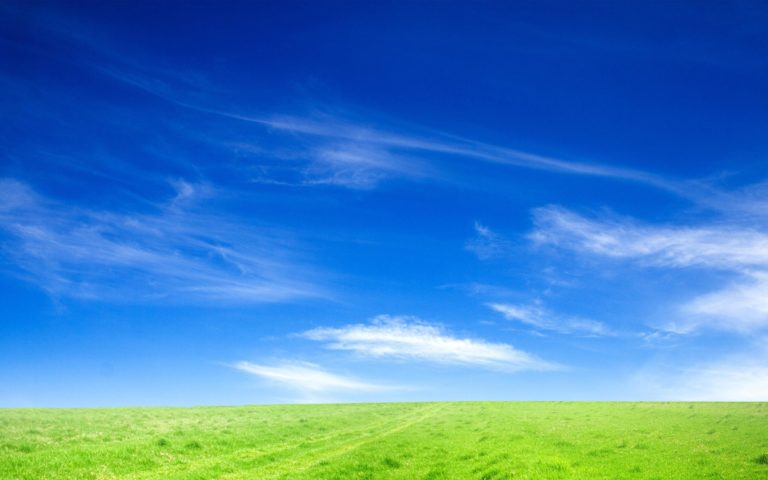 Blue Sky And Green Grass Wallpaper 1920x1200 768x480