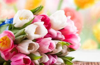 Bouquet Flowers Tulips Color Wallpaper 1920x1080 340x220