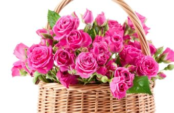 Bouquet Pink Beautiful Flowers Roses Wallpaper 1229x768 340x220