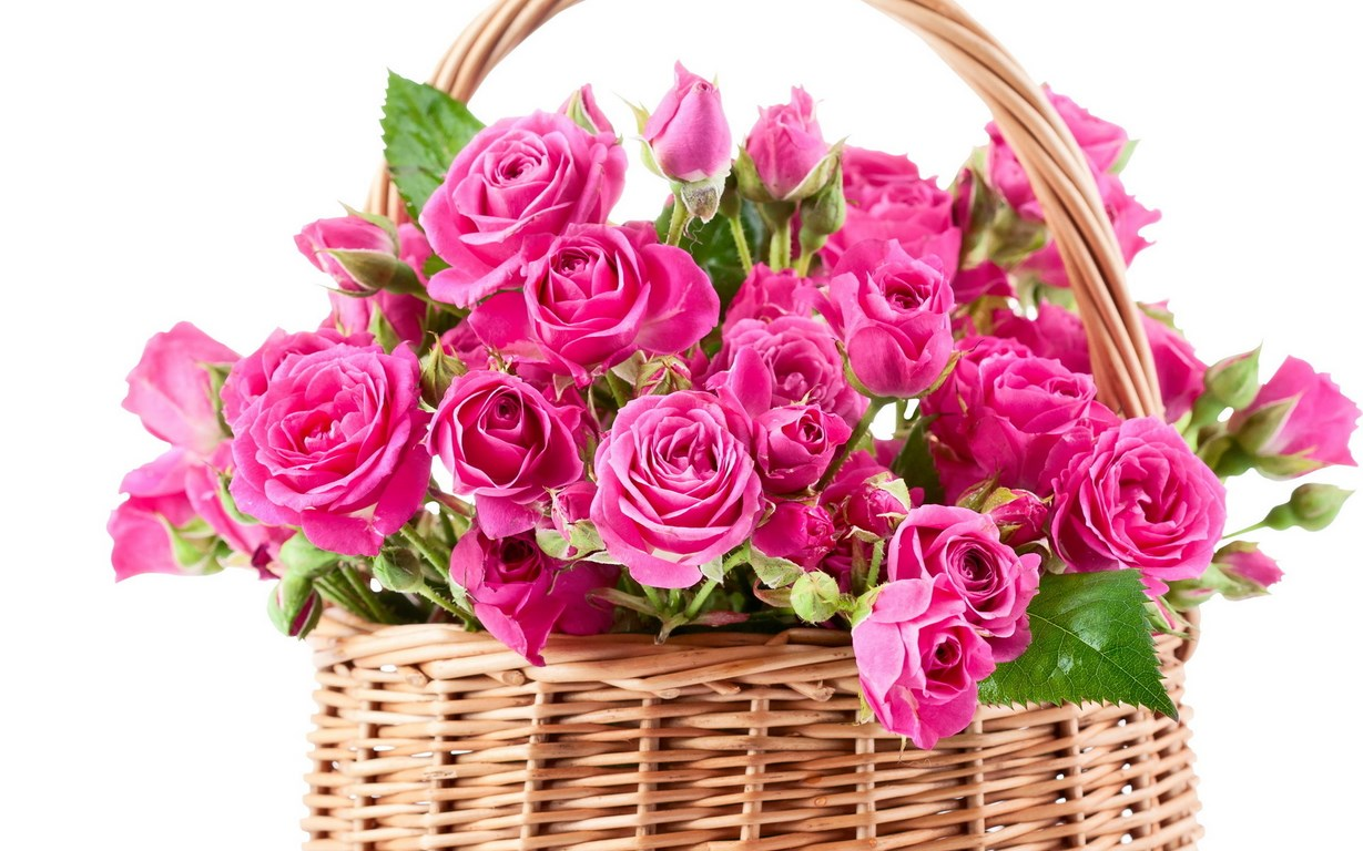 Bouquet Pink Beautiful Flowers Roses Wallpaper [1229x768]