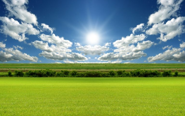 Bright Day Light Wallpaper 1920x1200 768x480