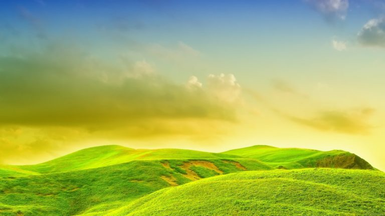 Bright Landscape Wallpaper 1920x1080 768x432
