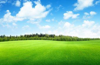 Clouds Trees Field Of Grass Beautiful Wallpaper 4293x2522 340x220
