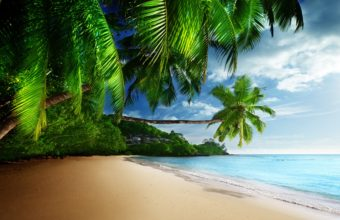 Coast Paradise Tropical Sea Sky Wallpaper 4800x2751 340x220
