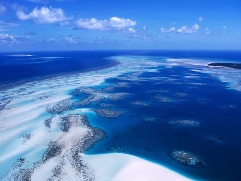 Coral Reef Australia Wallpaper 1600x1200 768x576