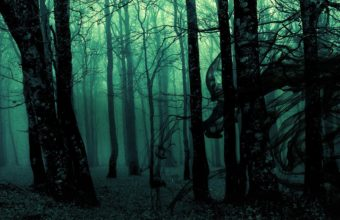 Dark Ghost Gothic Wood Trees Fantasy Wallpaper 1920x1080 340x220