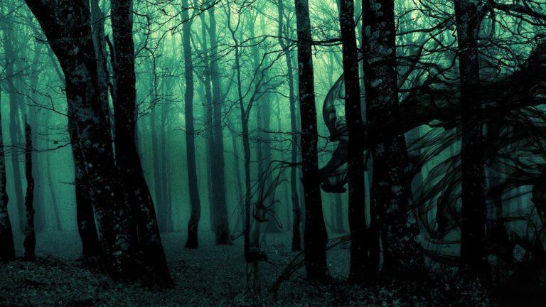 Dark Ghost Gothic Wood Trees Fantasy Wallpaper 1920x1080 768x432