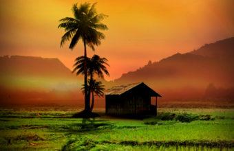 Dreamland iPhone 7 Wallpaper 750x1334 340x220