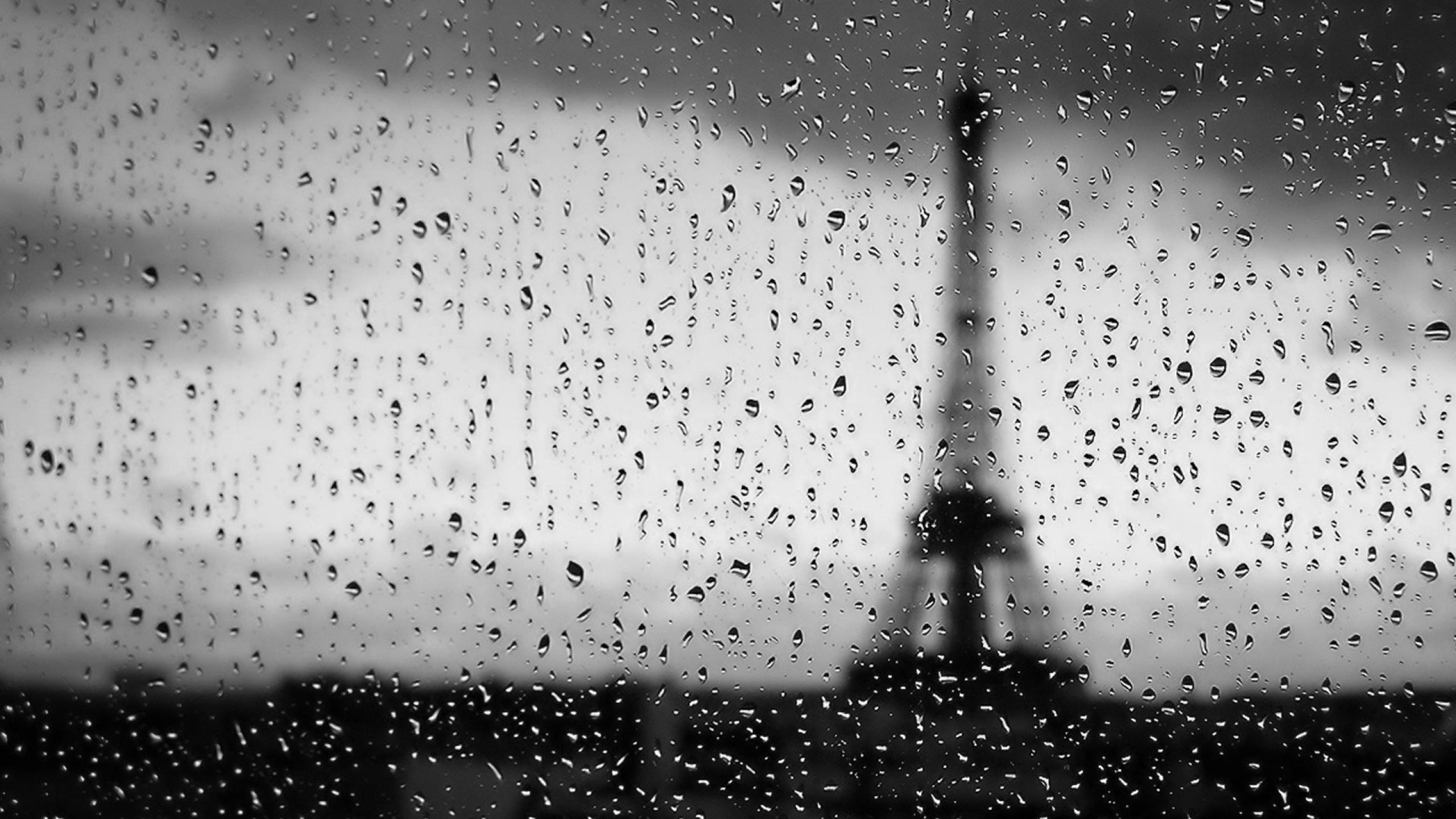 Eiffel Tower Water Black And White Wallpaper 2560x1440