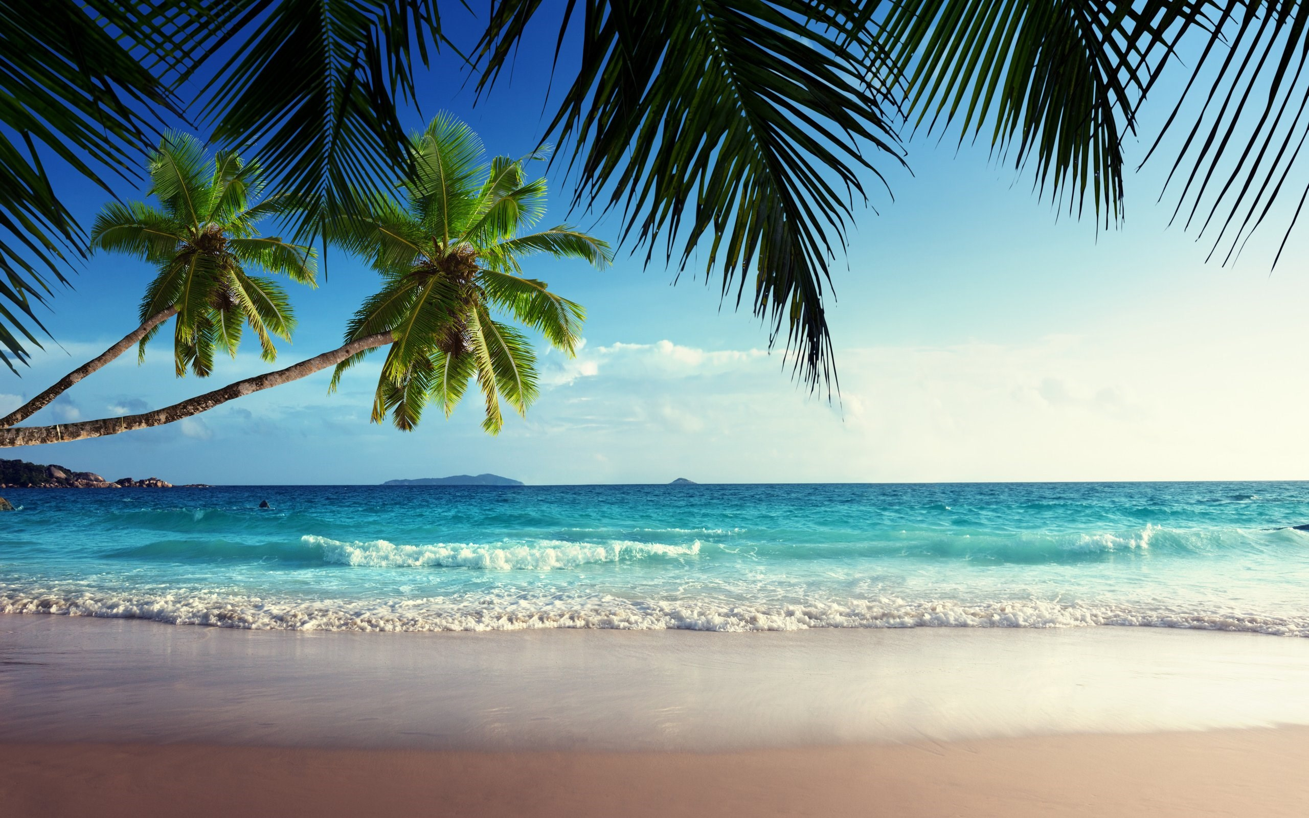 Emerald Sea Paradise Sunshine Beach Wallpaper 2560x1600