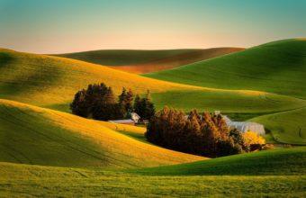 Field Grass Landscape Wallpaper 2048x1367 340x220