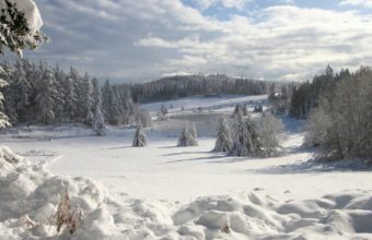 Field Snow Winter Wallpaper 1440x810 340x220