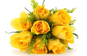Flowers Bouquets Roses Yellow Wallpaper 1920x1080 340x220