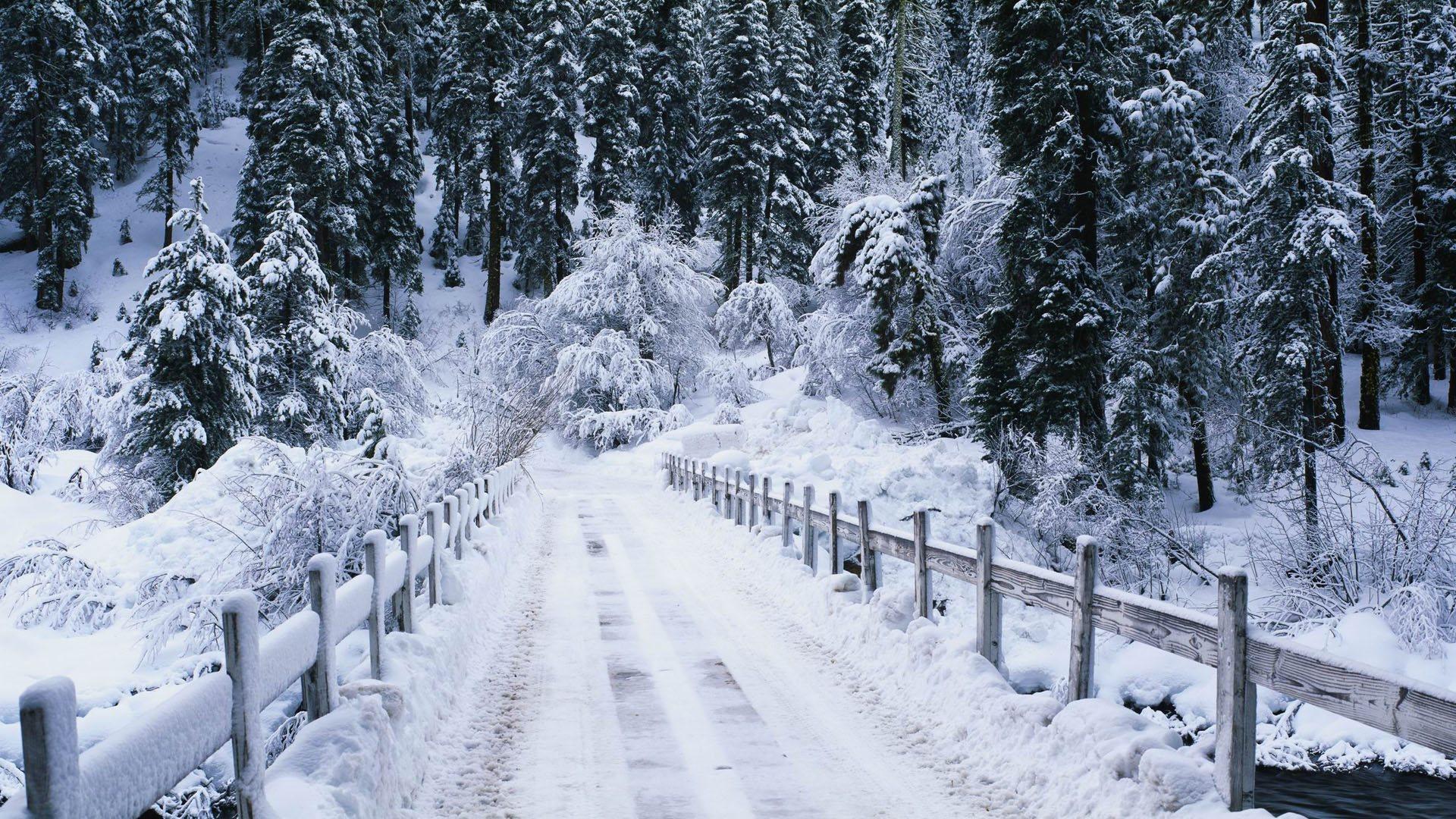 мостик зима снег речка без смс