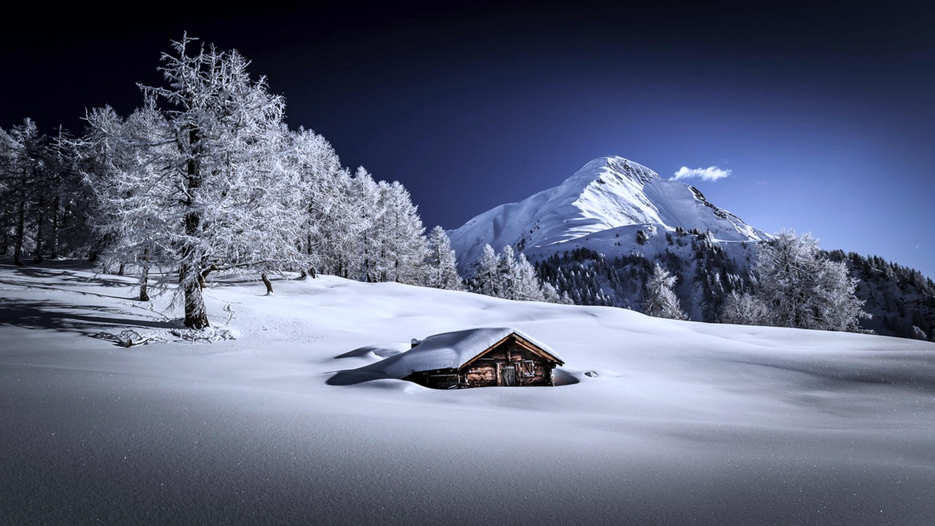 Frozen Winter 4K Wallpaper [3840x2160]
