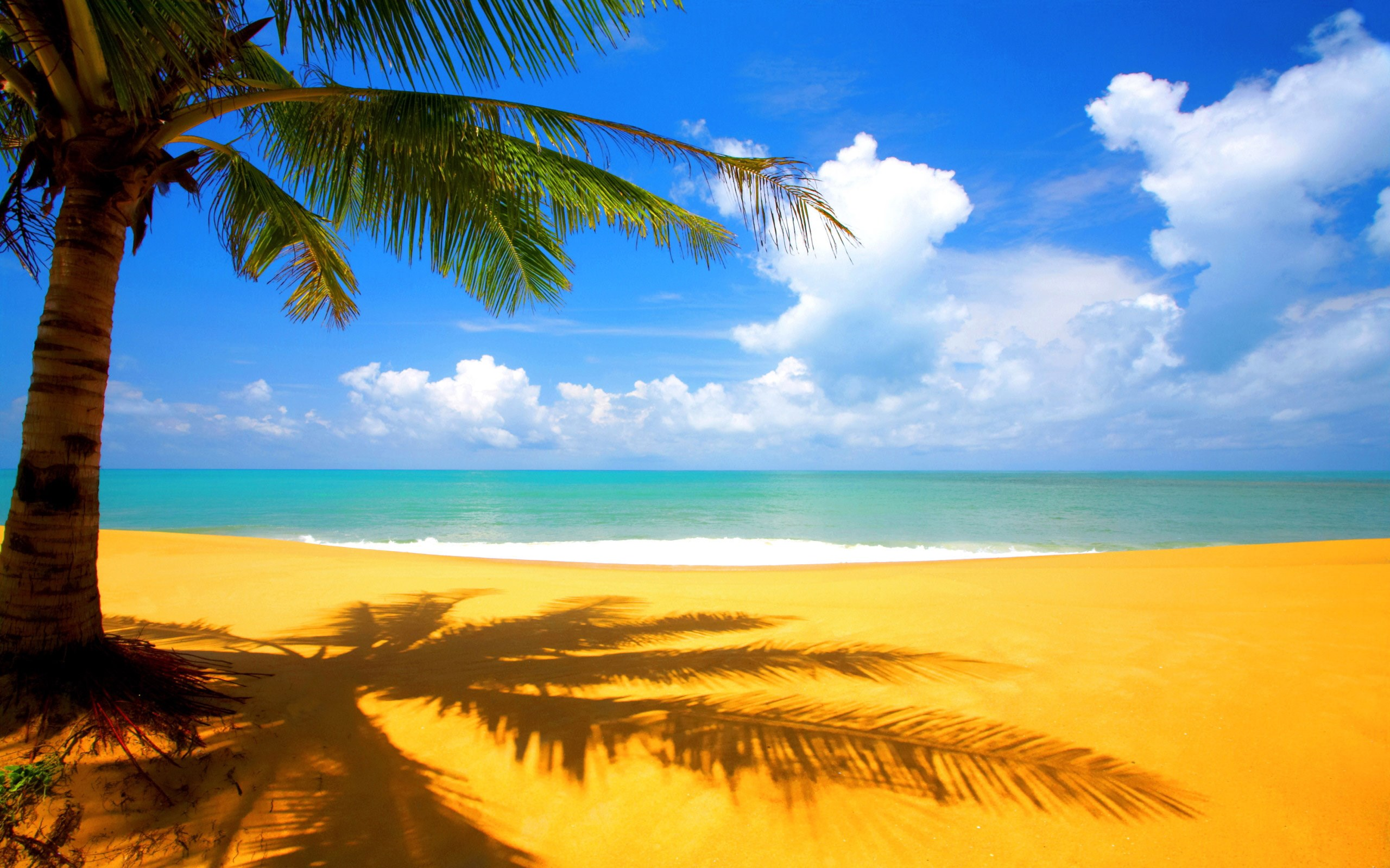 beach wallpapers hd