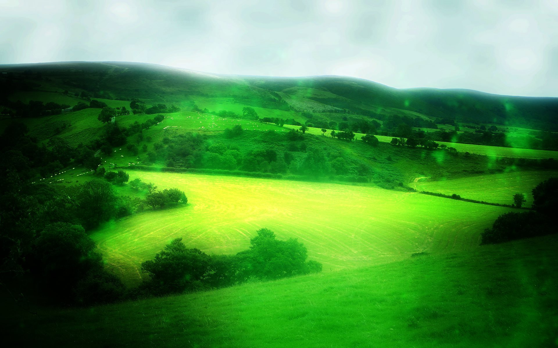 Green Scenery Wallpaper 1920x1200 768x480