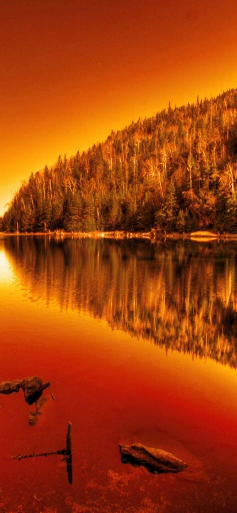 Landscape Phone Wallpaper 023 1080x2340 768x1664
