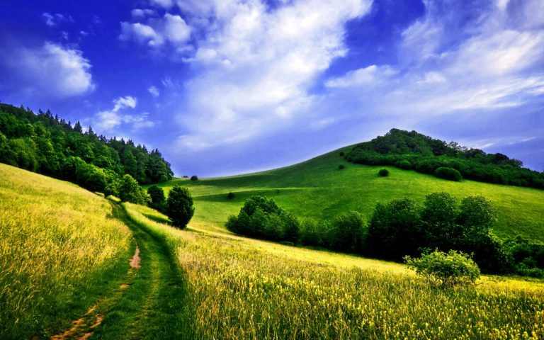 Lanscape And Fields Wallpaper 1920x1200 768x480