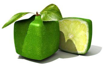 Lime Form Citrus Wallpaper 340x220