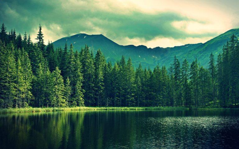 Mountains Summer Lake Wallpaper 2560x1600 768x480