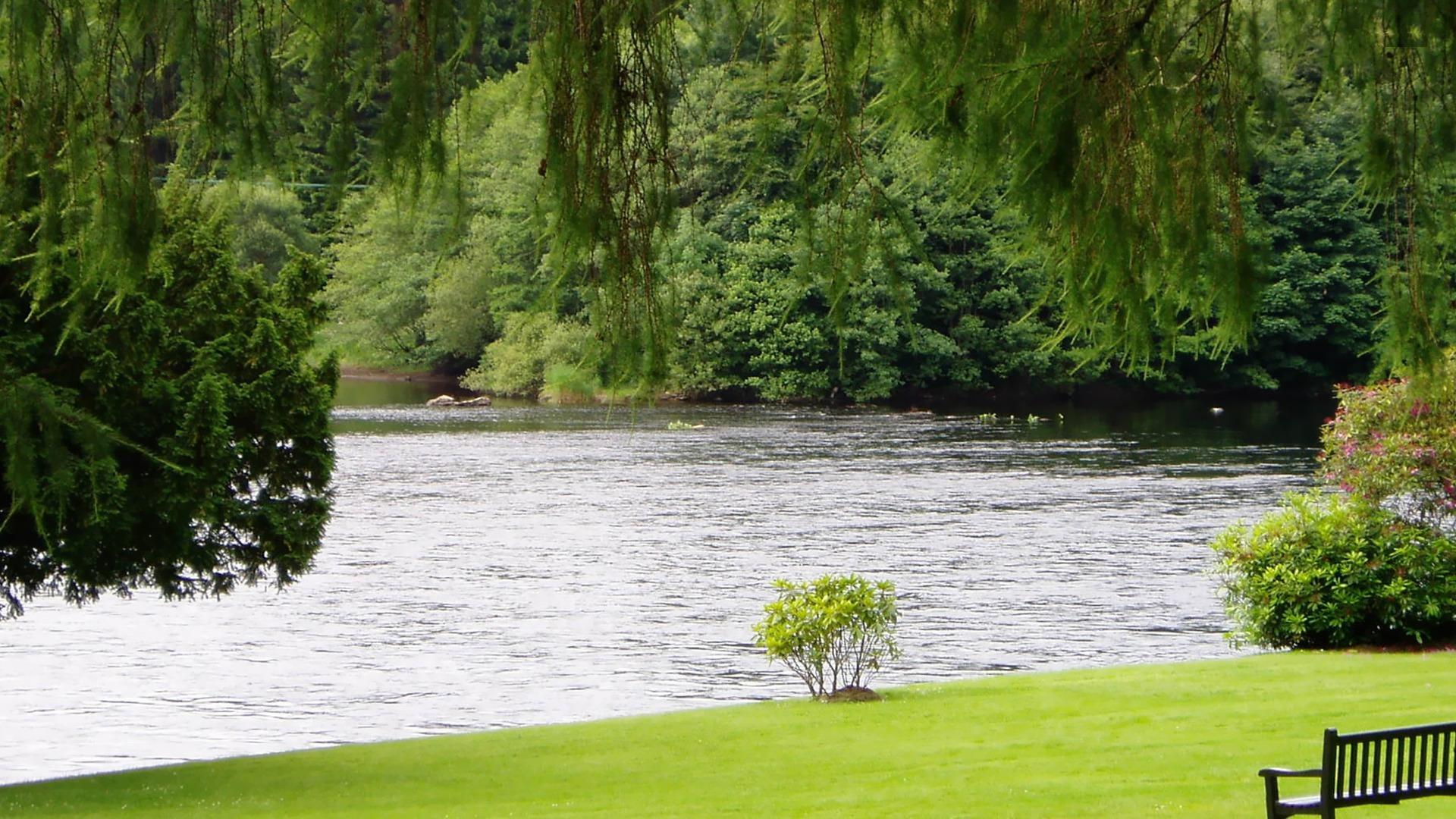 вся национальная фото деревья и река на рабочий стол могу вставить, поэтому