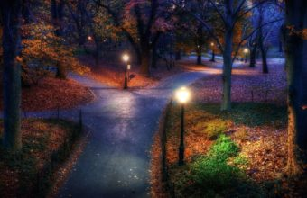Park Garden Autumn Fall Trees Lamp Wallpaper 1920x1200 340x220