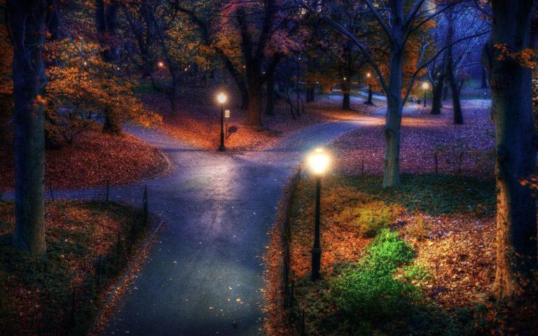 Park Garden Autumn Fall Trees Lamp Wallpaper 1920x1200 768x480